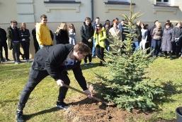 Maturzyści posadzili swoje drzewko
