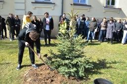 Maturzyści posadzili swoje drzewko_5
