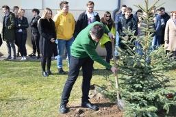 Maturzyści posadzili swoje drzewko_7