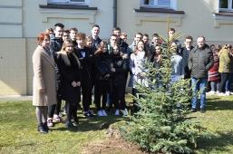 Maturzyści posadzili swoje drzewko_8