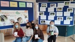 II LO dla schroniska w Nowodworze_12